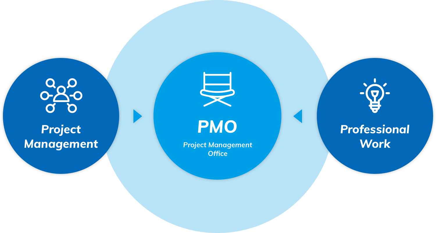 Project Management PMO Project Management Office Professional Work